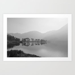 tree mist reflection. buttermere, lake district, uk Art Print