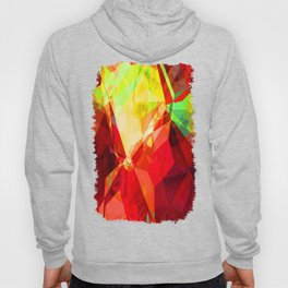 Mixed Color Poinsettias 2 Abstract Polygons 1 Hoody