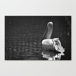 The White Swan Canvas Print
