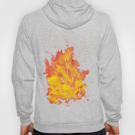 Explosion of colors_5 Hoody