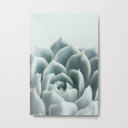 Fine Art Light Pastel Green Photograph of a Succulent, Botanical Metal Print