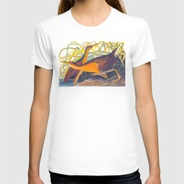 Great Red Breasted Rail John James Audubon Scientific Birds Of America Illustration T-shirt