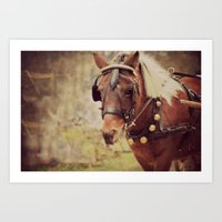 pony Art Prints featuring Pony by KimberosePhotography