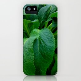 GREEN COMFREY LEAVES iPhone Case
