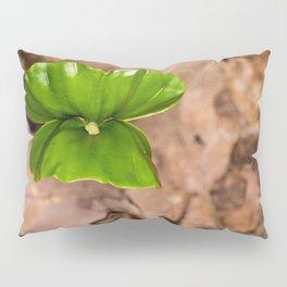 Green leaf Pillow Sham