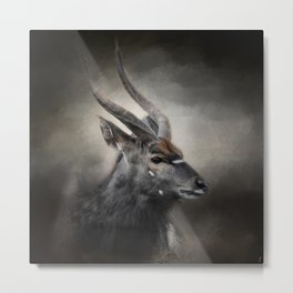 Waiting For The Storm - Nyala Buck - Wildlife Metal Print