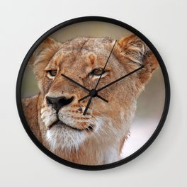 Head of the Lioness - Africa wildlife Wall Clock