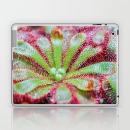 Drosera Laptop & iPad Skin
