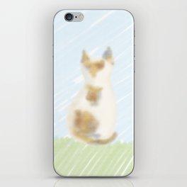 A cute calico cat iPhone Skin