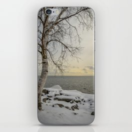Curves of the Silver Birch by Teresa Thompson iPhone Skin