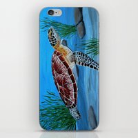 sea turtle iPhone & iPod Skins featuring Sea turtle  by maggs326