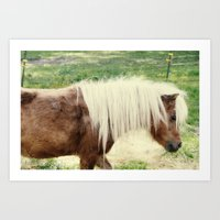 pony Art Prints featuring Pony by angela haugland