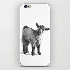 Goat baby G097 iPhone & iPod Skin