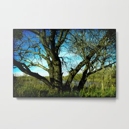 The Craggy Old Man Metal Print