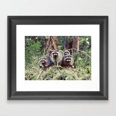 raccoon family Framed Art Print