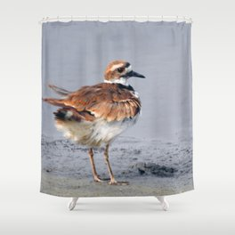 Juvenile Killdeer Shower Curtain