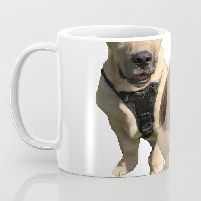 dgs Coffee Mug