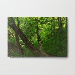 Woods II Metal Print