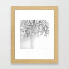 Hydrangea Still Life in Black and White #decor #society6 #buyart Framed Art Print