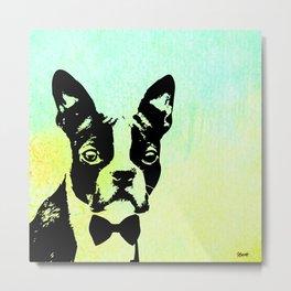 Boston Terrier in a Bow Tie Metal Print