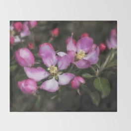 Pink Apple Blossoms Throw Blanket