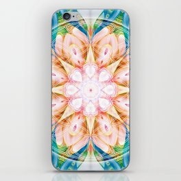 Flower of Life Mandalas 11 iPhone Skin