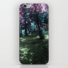 hometown forest iPhone & iPod Skin