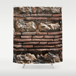 Ancient Mix-media Wall Shower Curtain