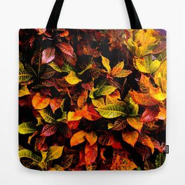 Red, Yellow, Green Tote Bag