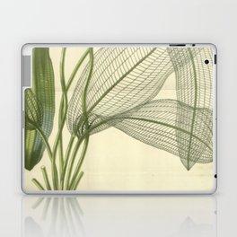 Skeleton Leaf Laptop & iPad Skin