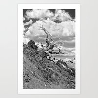 Mt.Baldy_10-01-2011_1116 Art Print