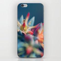 Tart iPhone & iPod Skin