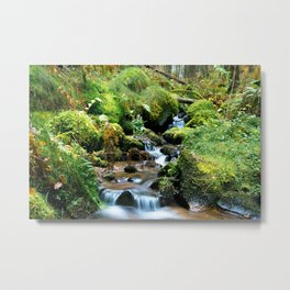 Forest me and you... Metal Print