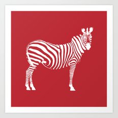 Big Red Zebra Art Print