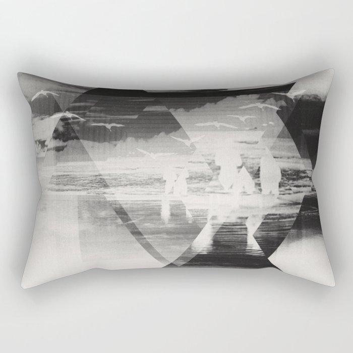 Fractions 22 Rectangular Pillow