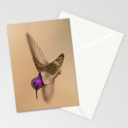 Male Costa's Hummingbird (Calypte costae) Stationery Cards