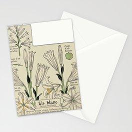 Maurice Pillard Verneuil - Étude de la plante (1903): Madonna Lily Stationery Cards