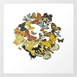 A Kaleidoscope Of Vintage Butterflies Vector Art Print