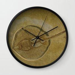 Flat Fish Fossil Wall Clock