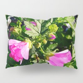 Pink Musk Mallow in September Pillow Sham