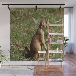Black-tailed Prairie Dog Pose Wall Mural