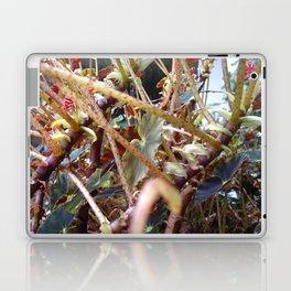 Dragon Fight    [PLANTS]   [VINES] Laptop & iPad Skin