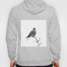 Perched sparrowhawk 8 Hoody