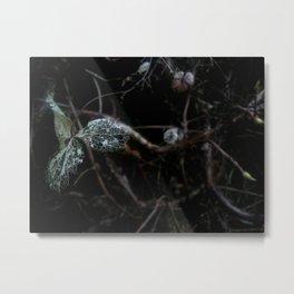 Broken Leaf Metal Print