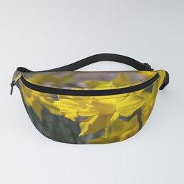 Daffodils 3 Fanny Pack