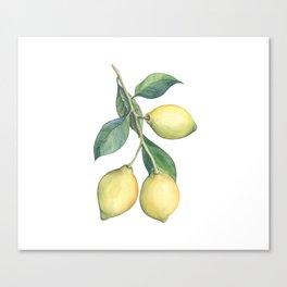 Lemon Dreams Canvas Print
