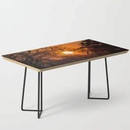 Sultry sun setting behind the sausage tree Coffee Table