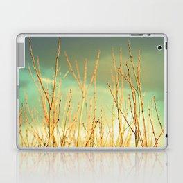 Wind in the Willows Laptop & iPad Skin