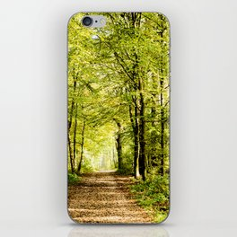 A pathway covered by leaves in a magical forest iPhone Skin