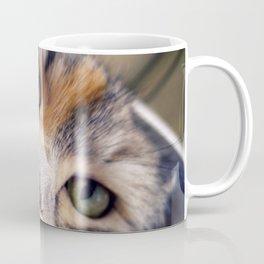 Siberian cat. The Cleopatra's nose. Coffee Mug